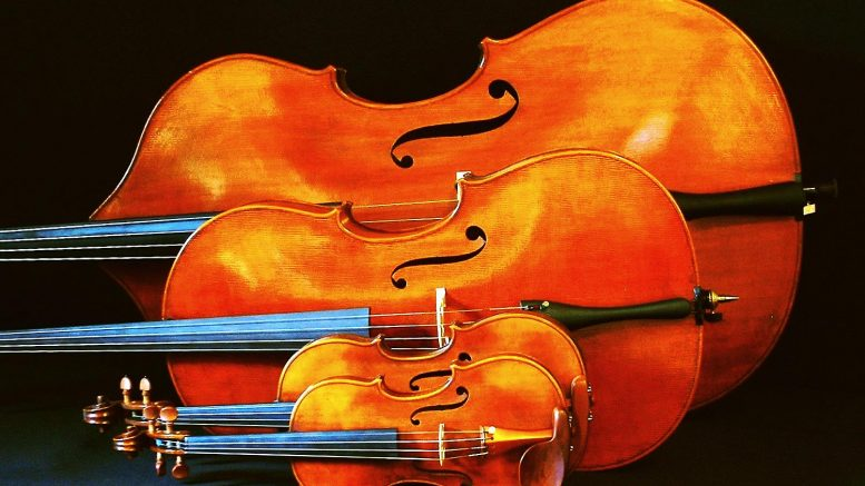 Do You Know The Difference Between A Violin Viola Cello